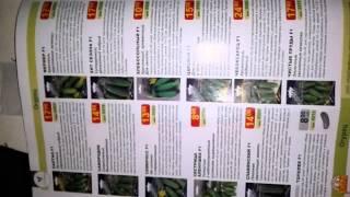 семена почтой(, 2014-12-25T13:07:30.000Z)