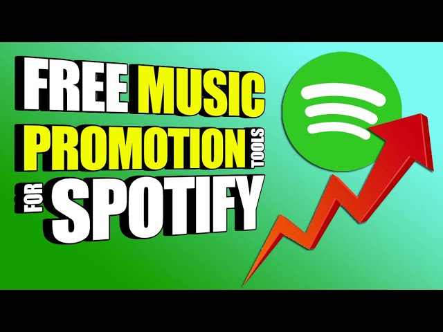 Small Orders or One Big Order? How to order Spotify Music Promotion💰📈