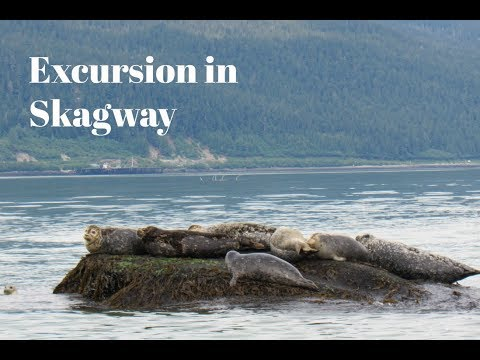 Explore North America's Longest and deepest Fjord | Escapes International Travel