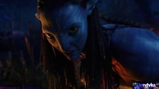Нейтири Спасает Джейка ... отрывок из фильма (Аватар/Avatar)2009