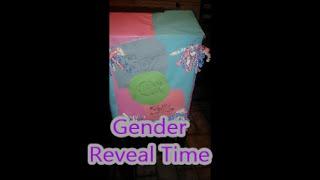Gender Reveal (Plus Size Pregnancy) Thumbnail