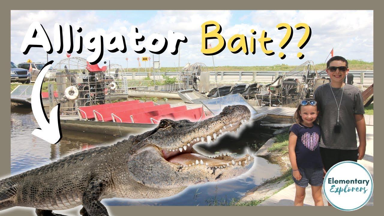 Gliding Through Everglades National Park - Coopertown Airboat Rides - Miami, Florida