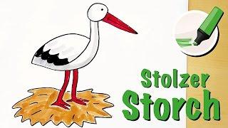 Storch zeichnen - stolz schreitender Vogel
