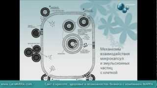 Особенности и преимущества продукции MIRRA (Мирра-Люкс)(, 2012-04-19T13:01:30.000Z)