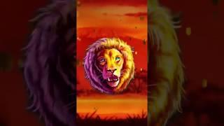 Neverland Casino - Grand Lion (9x16) v2