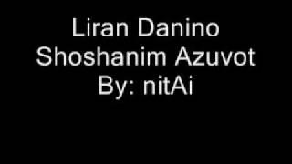 לירן דנינו - שושנים עצובות