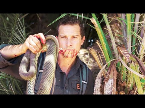 Top 10 Insane Bear Grylls Moments