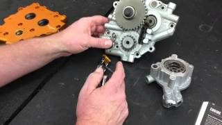 twin cam chain tensioners