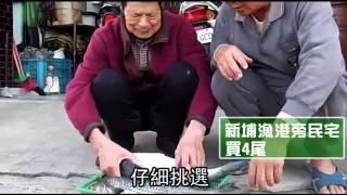 大陸節目掀台灣美食熱 陸客搶買烏魚子