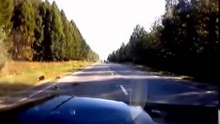 прыколы на дорогах