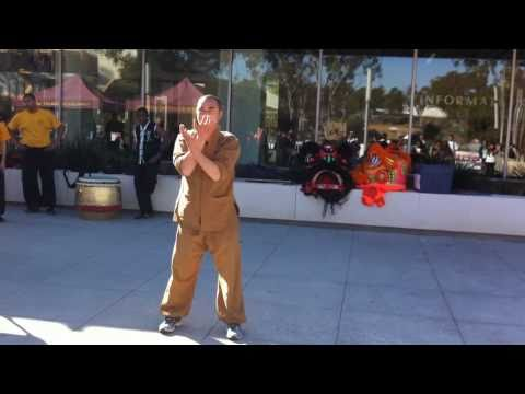 Shaolin Kung Fu Demo 2011 Chinese New Year