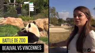 Battle: zoo de Beauval contre zoo de Vincennes