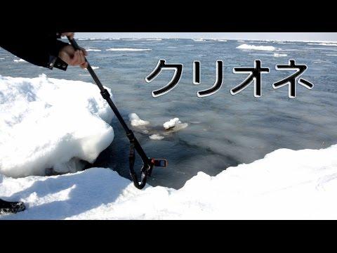 試される大地 クリオネ捕獲作戦! 【水中カメラが捕らえた!】