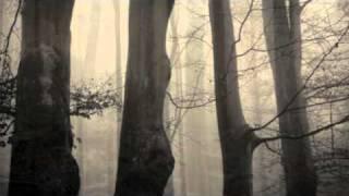 Dark Sanctuary - Tout Ce Sang Versé
