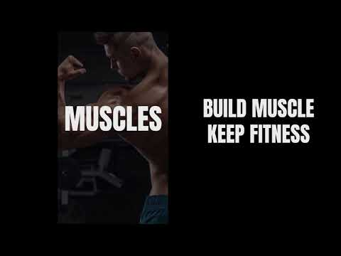 Home Workout - No Equipment - Apps on Google Play