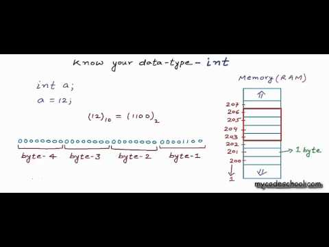 Know your data type: int - C Programming Tutorial 08