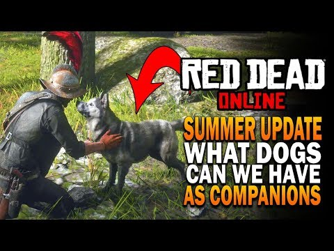 What Dogs Can We Have As Pets In The Red Dead Online Summer Update (RDO)