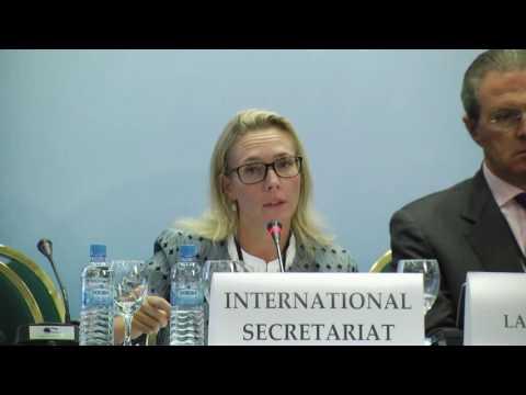 Presentation by Ms. Malin Larsson-Grave, European Asylum Support Office - Skopje Autumn Meeting 2016