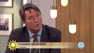 """Thomas Bodström: """"Varje hockeyslagsmål är misshandel"""" - Nyhetsmorgon (TV4)"""
