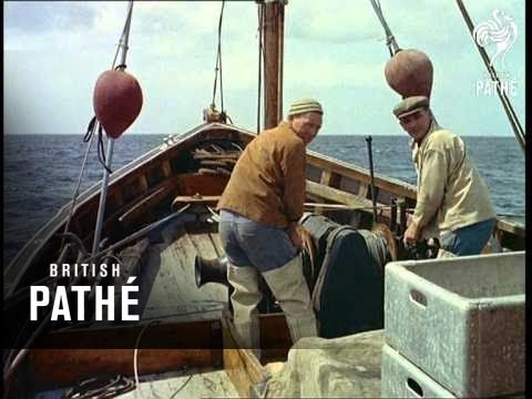 Science In Fishing (1958)
