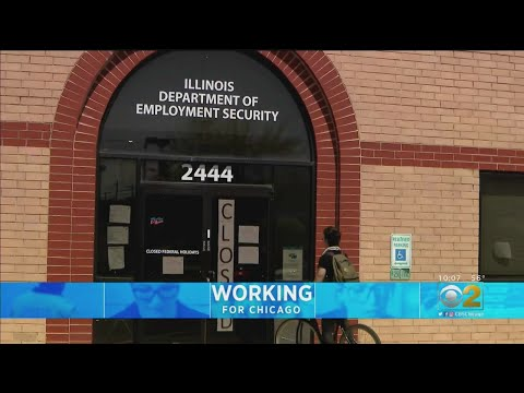 Will Illinois System Be Able To Handle Unemployment For Gig Workers?