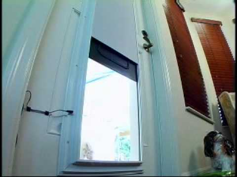 Plexidor Electronic Dog Door Youtube