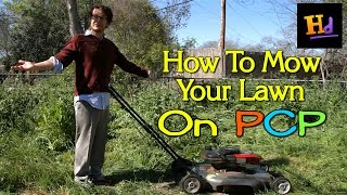 How To Mow Your Yard on PCP - Do Anything Stoned Ep. 1