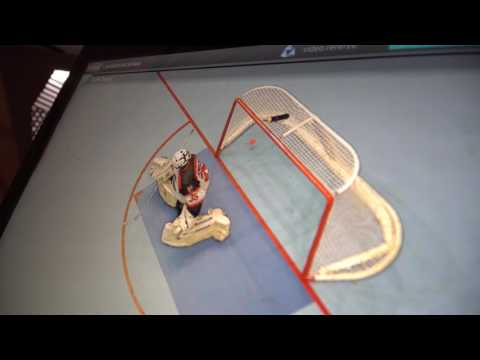 First use of video goal judge in history of man ballhockey