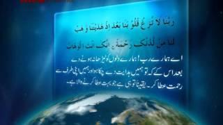 Quran-Filler