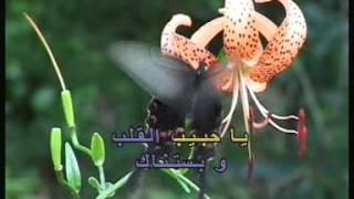 Arabic Karaoke Elissa 3aychalak