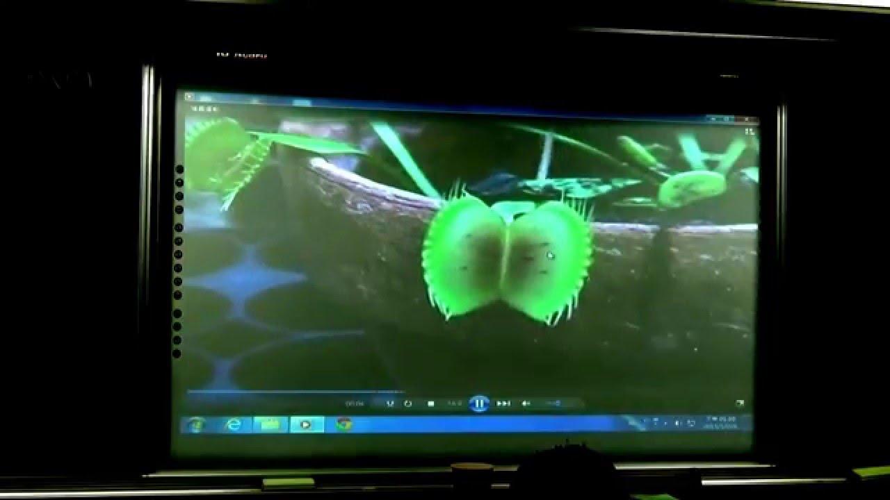 國一上生物5-4(0)植物的感應-影片介紹
