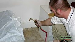 Bed Bug Pest Control Wynnewood PA   Eliminate Bed Bugs Wynnewood PA