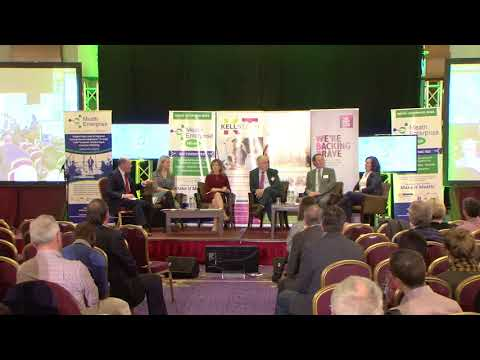 Meath Enterprise Week Business Conference & Expo 2017 Panel 4