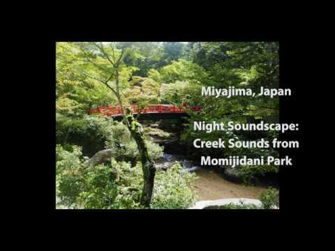 Momijidani Stream-Sound at Night