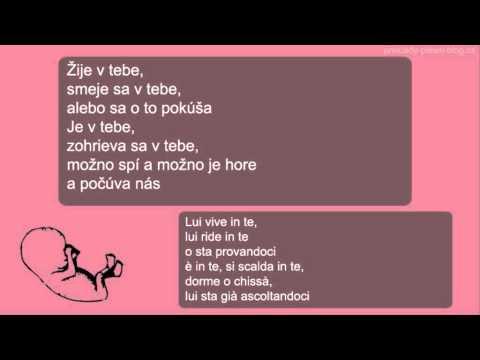 Nek - In te (preklad + text)