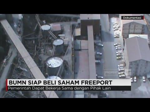 BUMN Siap Beli Saham Freeport