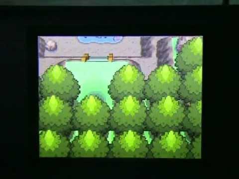 Pokemon et l'action replay part 3/3 + quelques glitches