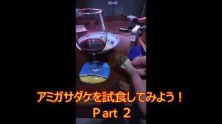 アミガサダケ(モリーユ)を料理・試食しよう!モリーユ料理!(morel)Part 2