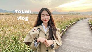 SUB) YeLim vlog 제주도에서 대학생활하기 (…