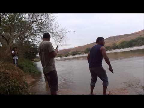 Pescaria de Dourado no Rio Doce