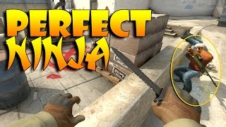 CS:GO - Perfectly Executed Ninja!