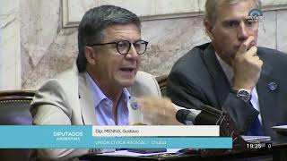 Diputado Menna Gustavo  - Sesión 19-12-2019 - Pl