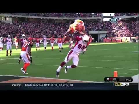 Jerome Simpson   Front Flip Touchdown  NFL
