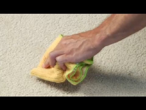how to get smell out of carpet after flood