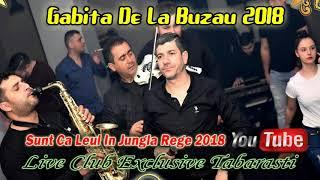 Gabita De La Buzau 2018 - Sunt Ca Leu-n Jungla Rege (Live Club Exclusive Tabarasti)