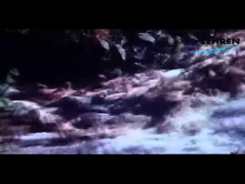 Bhoopalam Isaikkum | Thooral Ninnu Pochu | Tamil Film Song