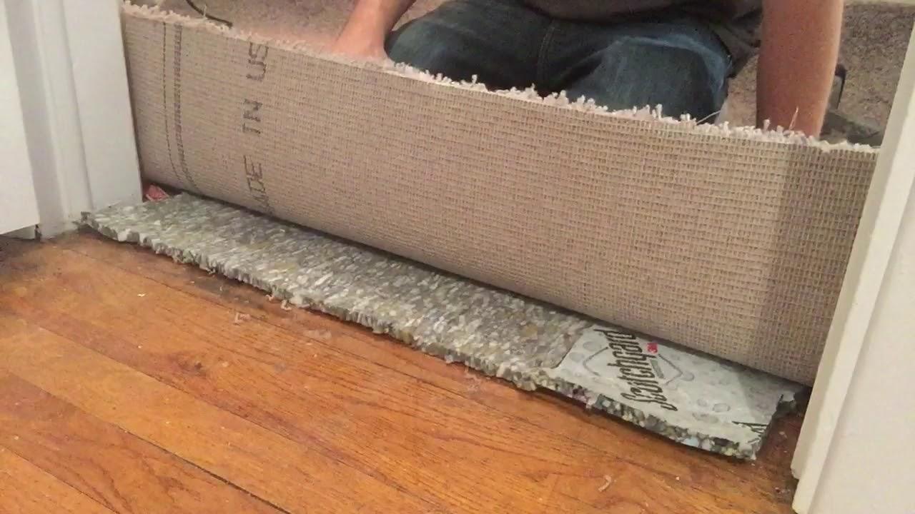 Carpet To Hardwood Transition Floor Transitions Carpettoolz