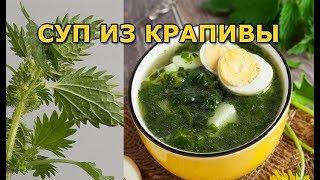 Как приготовить суп из крапивы