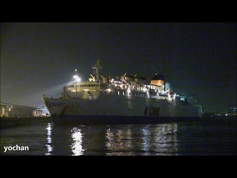 Night View - Ro-Ro / Passenger Ship: CRUISE FERRY HIRYU 21 (IMO: 9135250) Departure! Port of Tokyo