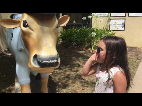 Kids Arrested for Stealing Cow